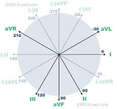 Ecg Chart Labeled The 360 Degree Heart Part I Ems 12 Lead