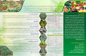 Kitchen Gardening Pamco Punjab Agriculture Meat Amp Meat Company