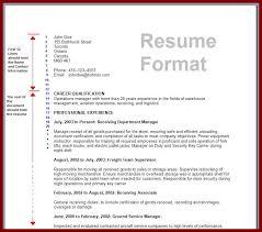 Details Of Resume - Kleo.beachfix.co