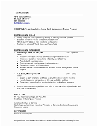 Operations Executive Resume Examples Resume For Operations Manager