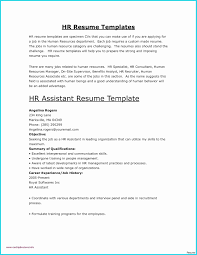 Example Of Professional Resume Best Of Microsoft Word Templates