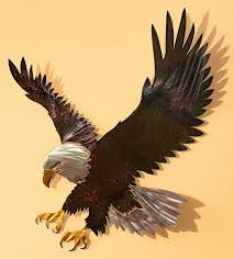 5600041533 majestic bald eagle indoor outdoor metal wall art on outdoor eagle wall art with majestic bald eagle indoor outdoor metal wall art wild wings