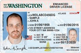 Licensing State Designs Driver Official dol Site License Wa