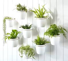 hanging wall planters indoor the best wall planters for outdoor and indoor house plants planter boxes hanging wall planters indoor diy