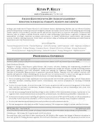 Cfo Resume Assistant Controller Resume Sales Assistant Lewesmr 49