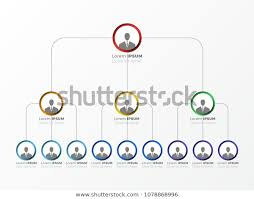 Organizational Structure Company Business Hierarchy