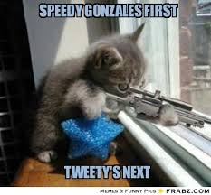 speedy gonzales first... - Kitty assassin Meme Generator Captionator via Relatably.com