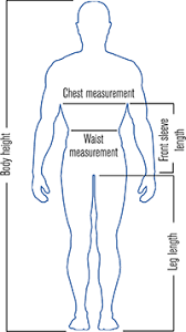 Ideal Female Body Measurements Chart Female Body Sewing