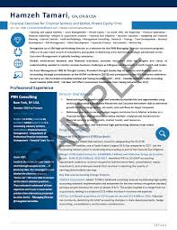 Executive Resume Sample Chief Financial Officer Executive Resume Fascinating Private Equity Resume