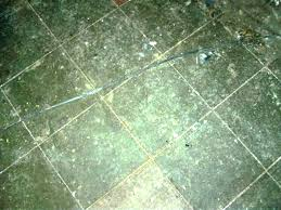 how much does it cost to remove asbestos floor tiles asbestos floor tile removal removing asbestos