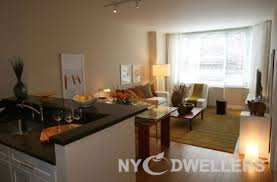 Superior Remarkable Simple 1 Bedroom Apartments Nyc 1 Bedroom Apartments Nyc 1  Bedroom Studio Apartments New York City