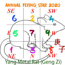 2020 Flying Star Xuan Kong Annual Analysis For The Year Of