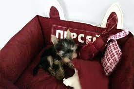 dog proof bedding ding hair waterproof pillows uk