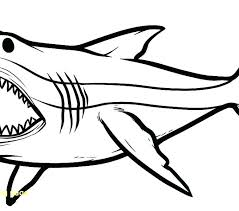 Megalodon Coloring Pages Coloring Page Coloring Page Coloring Pages