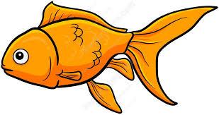 gold fish clip art.  Clip Swimming Goldfish Cartoon Clipart And Gold Fish Clip Art