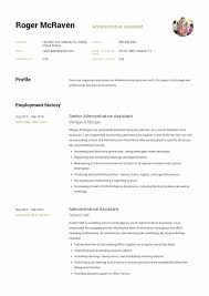 Example Of Executive Assistant Resumes Executive Administrative Assistant Resume Sample Template