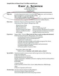 How To Write A Great Resume Best Writing Great Resumes Writing A Great Resume Objective Example How