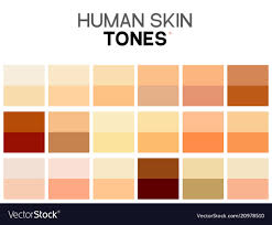 Skin Complexion Color Chart Skin Tone Color Chart Human Skin Texture Color