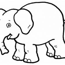 Small Picture Elephants Coloring Pages Printable Kids Colouring Elephant Page adult