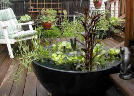 Small Picture How to Build a Container Water Garden Green Decor and Design