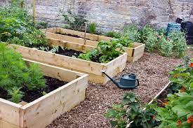 install raised beds taverham nursery