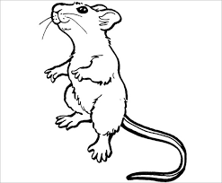 Small Picture 21 Mouse Templates Crafts Colouring Pages Free Premium