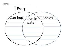 Comparison Venn Diagram Venn Diagram For Frog And Fish Comparison In Kindergarten