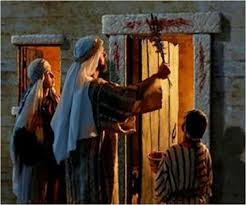 Image result for passover blood pictures
