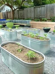 galvanized raised garden beds fascinating galvanized raised bed the eclectic landscapes galvanized troughs how to build