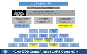 Nih Organizational Chart File Care Organizational Chart Year 2 3 2 2015 Png