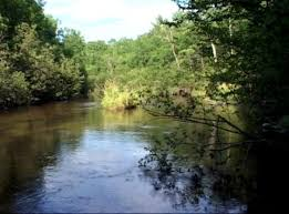 Pere Marquette River Hatch Chart Fly Fishing Gear Tackle And Flies For The Pere Marquette River