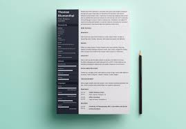 Resume Templates Functional Sample Dreaded Doc Word For Information ...