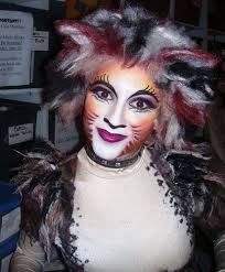 s face painting tutorial 11 best gatos ales images on cats cats al and cat makeup