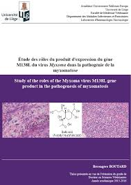 immunology vaccinology ulg veterinary medicine department of  doctor boutard berengere thesis