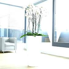 indoor large plant pots indoor plant pots planters indoor full size of plant tall indoor plants