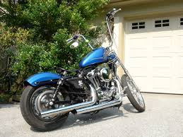 removing rear fender struts or replacing with shorter ones