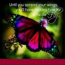 Butterfly Beauty Quotes