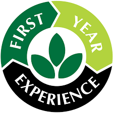 the first year experience mohawk valley community college the first year experience office is here to support new students and their families other supporters as they make the transition to college