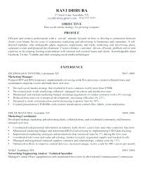 Professional Achievement Examples Examples Of Accomplishments On A Resume Achievements Resume Example