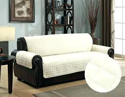 Sofa pet covers Cream Pet Covers For Sofas Sofa Cover For Pets Sofa Pet Covers And Fancy Sofa Covers For Pets With Sofa Covers For Pets To Protect Plastic Sofa Covers For Pets Bonobologyco Pet Covers For Sofas Sofa Cover For Pets Sofa Pet Covers And Fancy