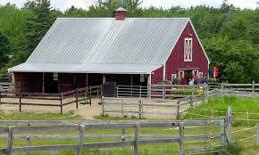 Small Barn Designs Small Farm Barn Designs Pole Barns House Design For Goats