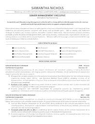 Best Resume Examples For Graphic Designers Great Resumes Templates