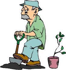 """Résultat de recherche d'images pour """"gif jardinage"""""""