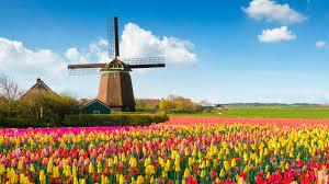 Of zoek in het menu of bij belangrijke thema's. Die Niederlande Wollen Nicht Mehr Holland Genannt Werden