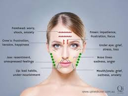 Chinese Medicine Face Reading Chart Hidden Meanings Behind The Lines And Wrinkles On Your Face