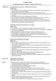 Download Consulting Technical Manager Resume Sample as Image file
