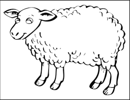 Small Picture sheep coloring pages for preschool free printable coloring pages