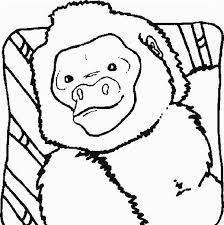 Disegni Da Colorare Gratis Per Bambini Scimmia Babbuino Disegni Da