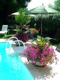 best plants around pool stunning ideas about on full sun worst trees to plan plants around pool