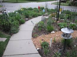 This is the area I've tried to mostly plant native plants in. Some of the  plants I thought were native when I bought them aren't, but so far, ...